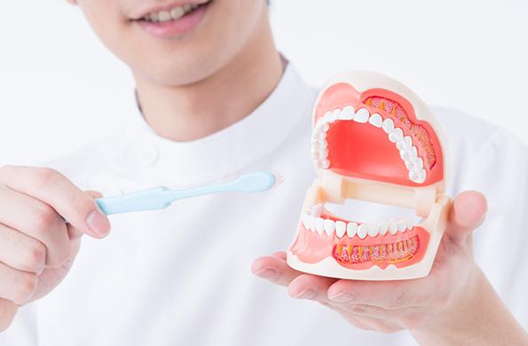 さわやか歯科の予防歯科